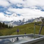 Jungfrau. Lauterbrunnen Switzerland reflection 150x150 Sunflowers